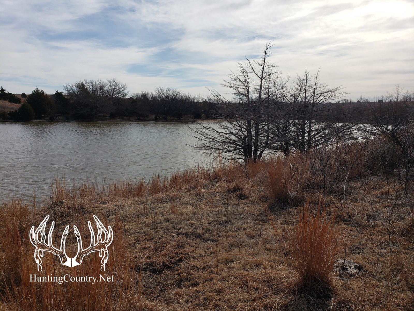 462 acres m/l BARBER COUNTY KANSAS HUNTING Land For Sale