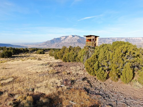 Prime elk hunting land for sale in Western Colorado