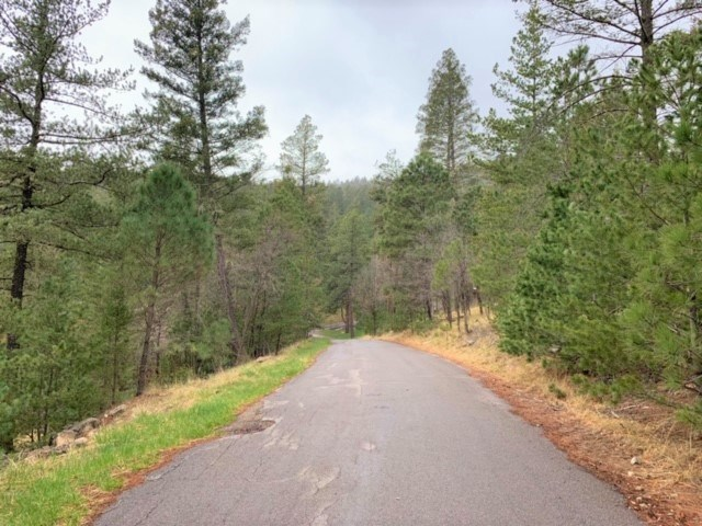 Half Acre residential lot near Cloudcroft NM