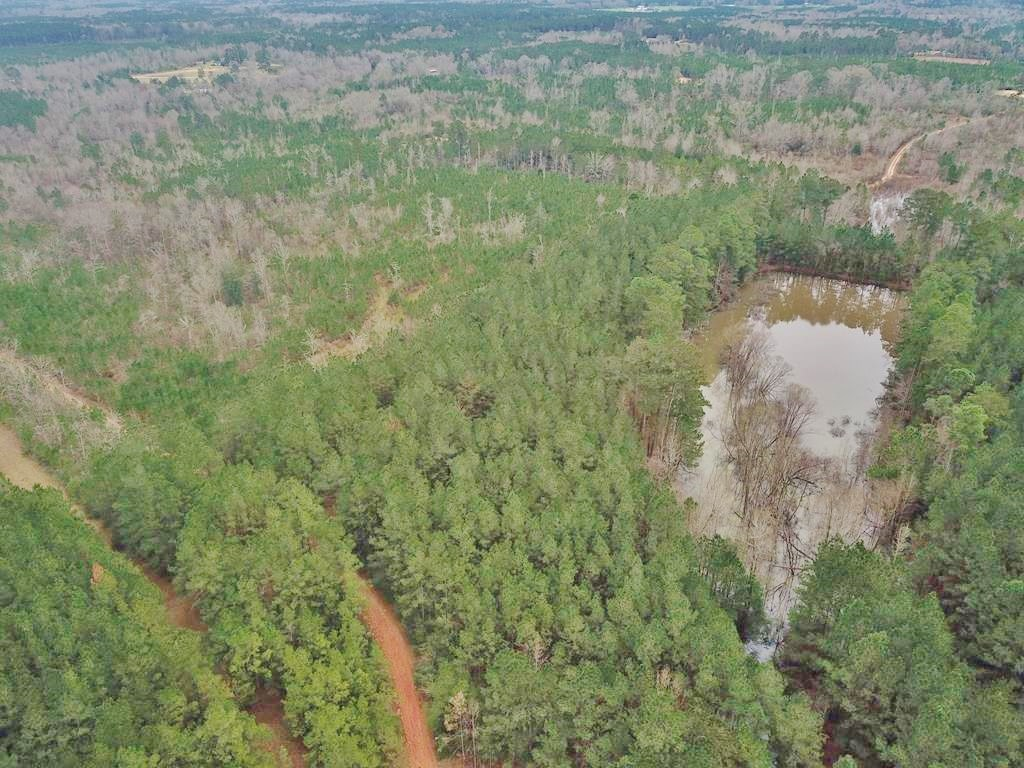 48.26 Acres Hunting Land with Pond & Timber, Pike County MS