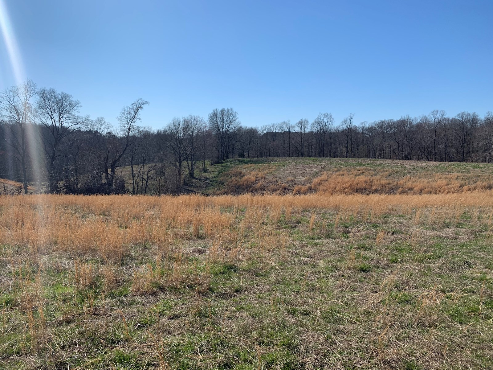 33 Acres for sale in Leoma, TN