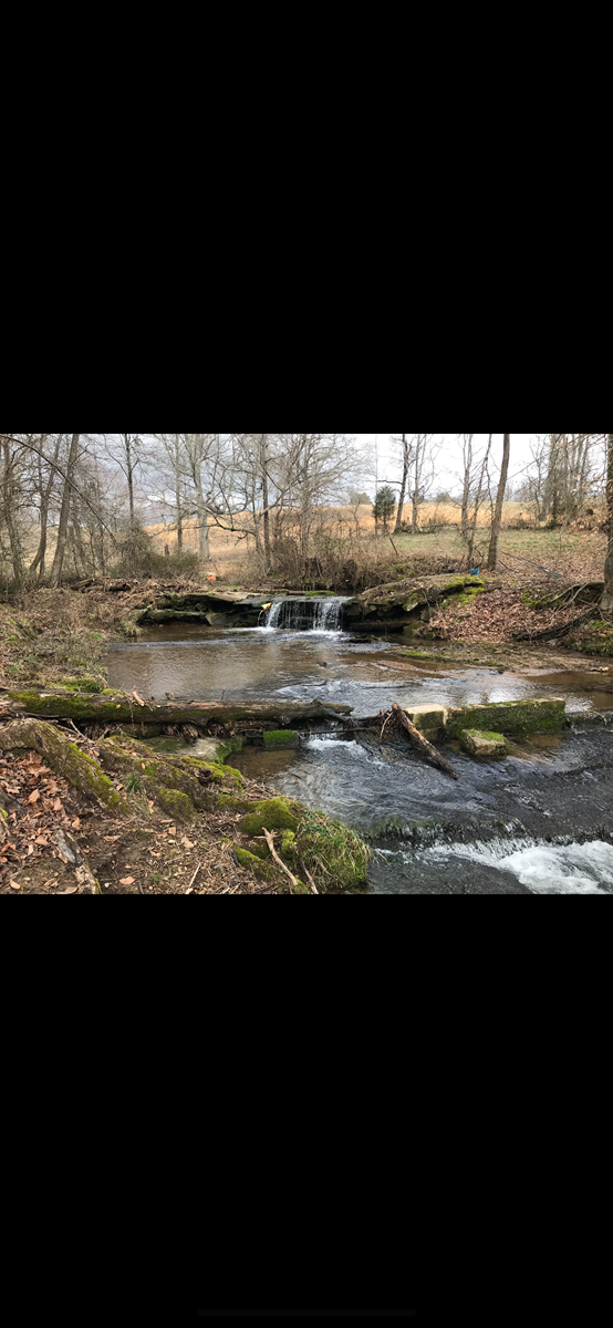 Farm for sale in Tennessee Spring Feed Creek With Waterfall
