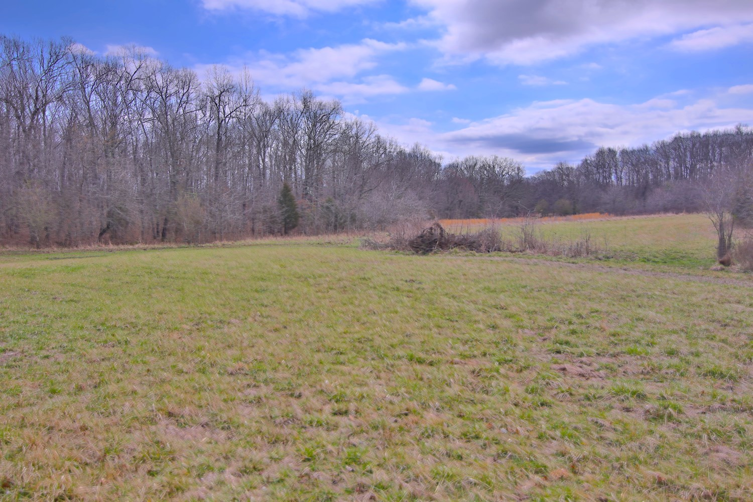 Hunting / Farming Acreage For Sale in Oregon County, Missour