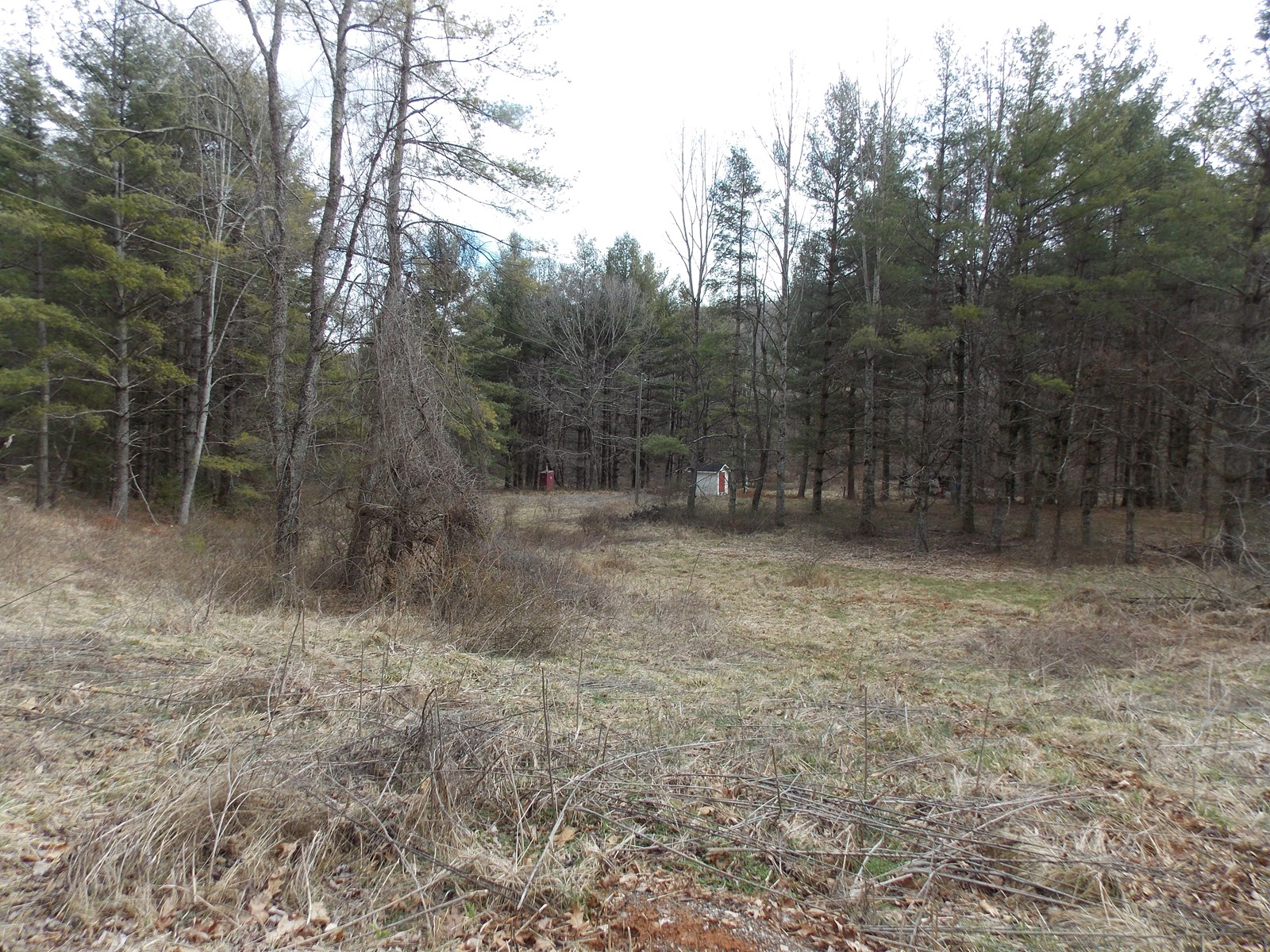 Land for Sale in Floyd VA