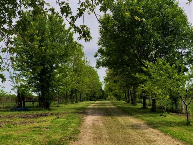 Home for sale on 21+/- acres  Harrisonville, MO Cass County