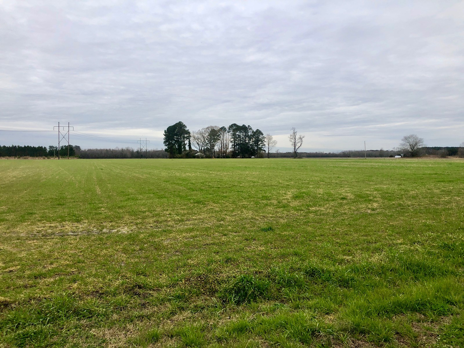 Farmland For Sale Pitt County, Equine Property Greenville NC