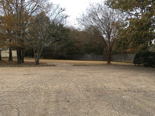 Lot for Sale - Middleton Ct, Starkville, MS