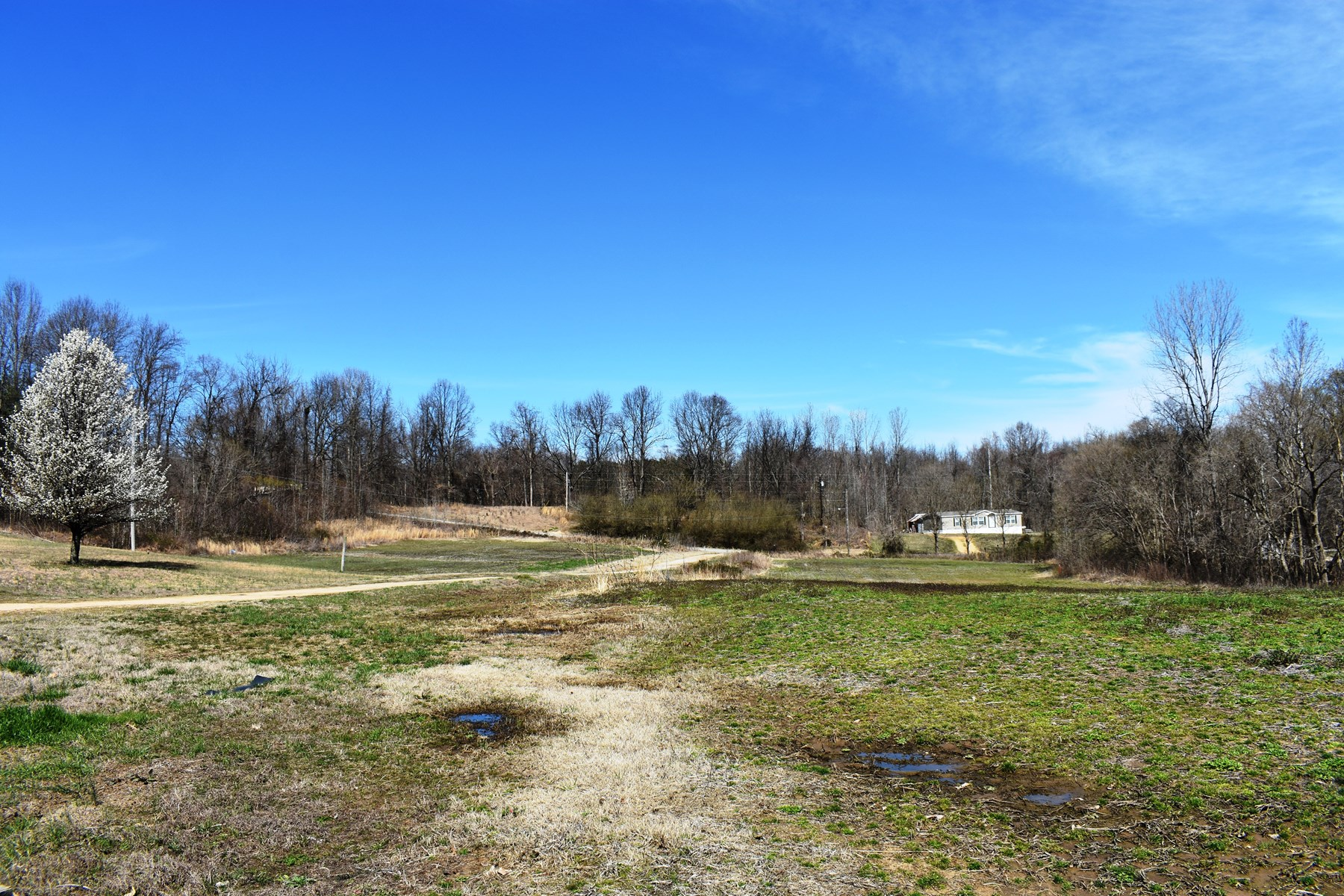 Income Producing Hobby Farm for Sale w/ Mobile Home & 20+ AC