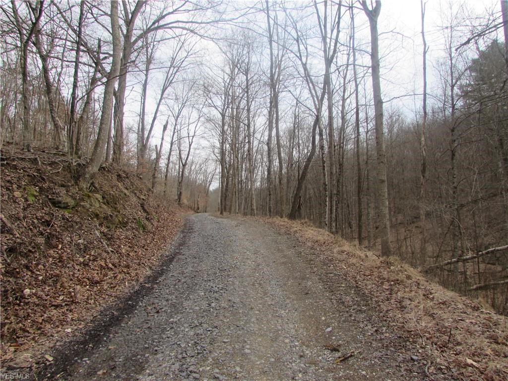 70 ACRES OF WOODED HUNTING LAND IN WV