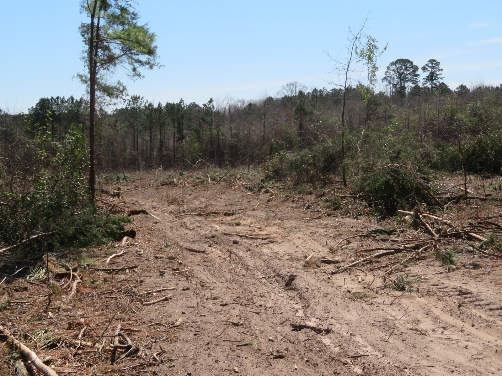 East Texas recreational land for sale