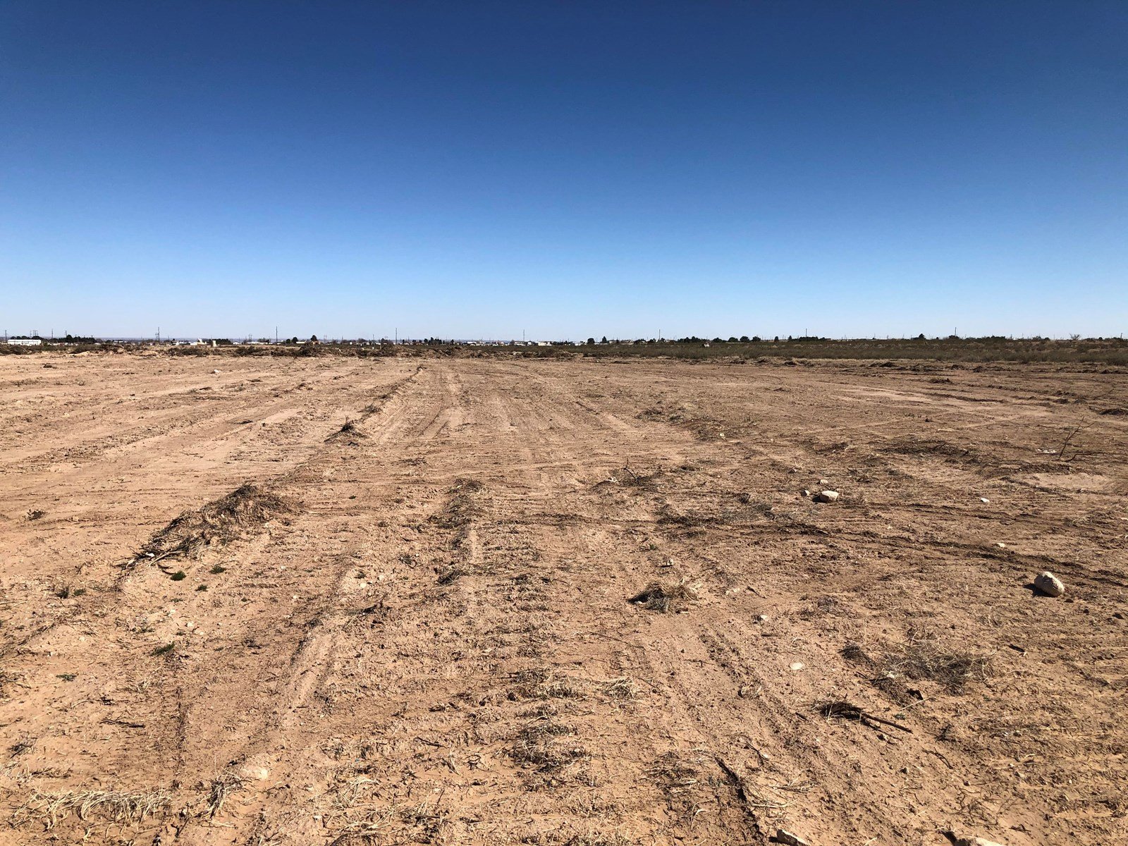 Land For Sale Near Carlsbad, NM.