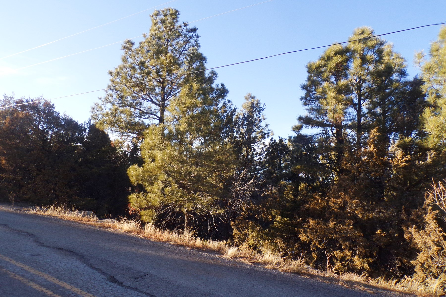 Edgewood, NM Residential 2 Acre Wooded Lot For Sale