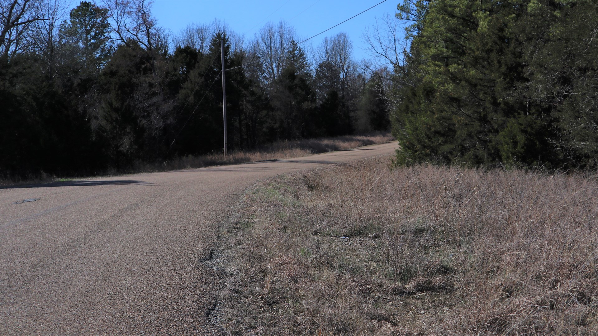 VACANT LAND NEAR LAKE NORFORK IN ARKANSAS