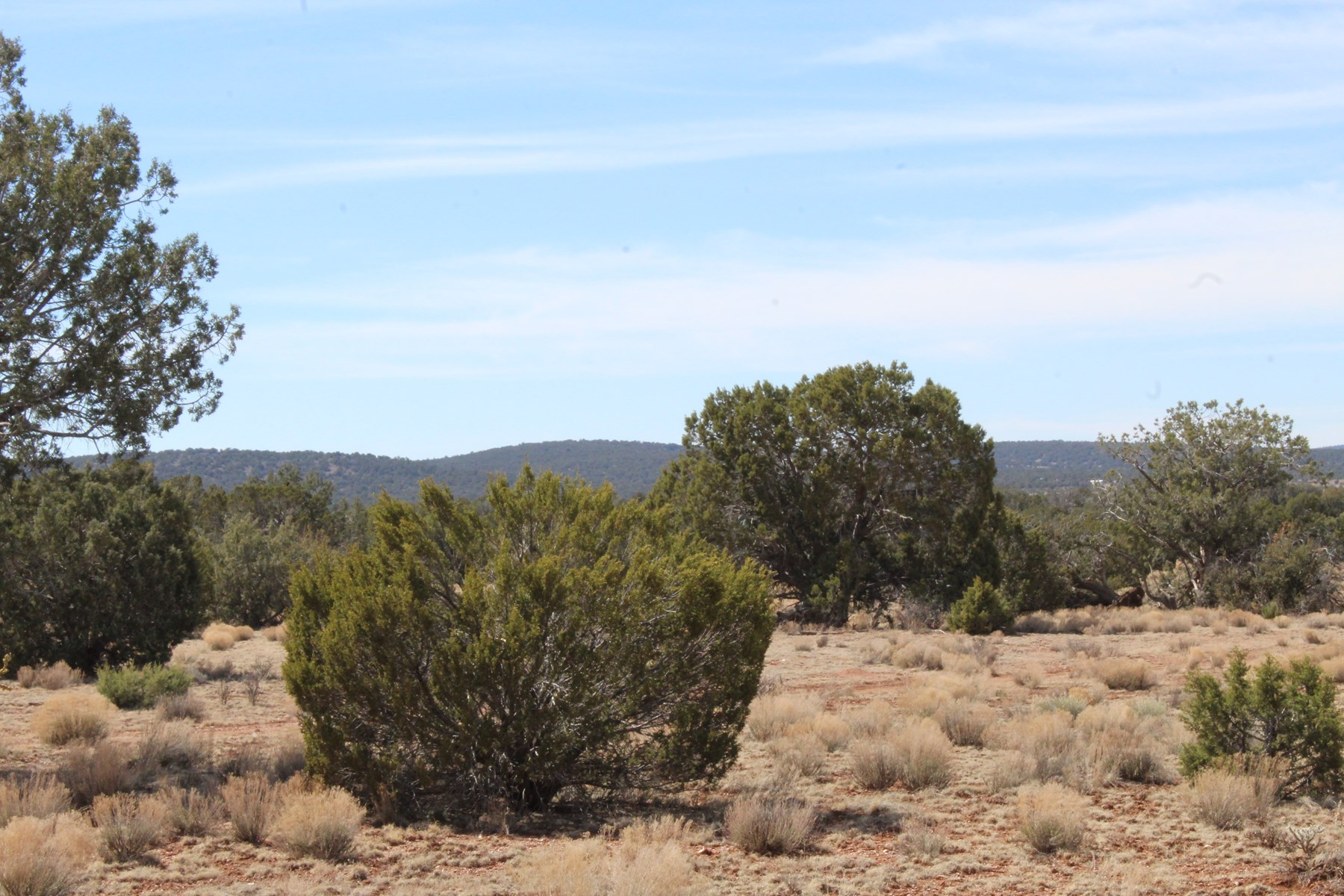 Large Acreage Land in Seligman, NO HOA