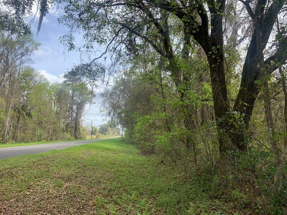 2 ACRES FOR SALE - ALACHUA COUNTY FLORIDA