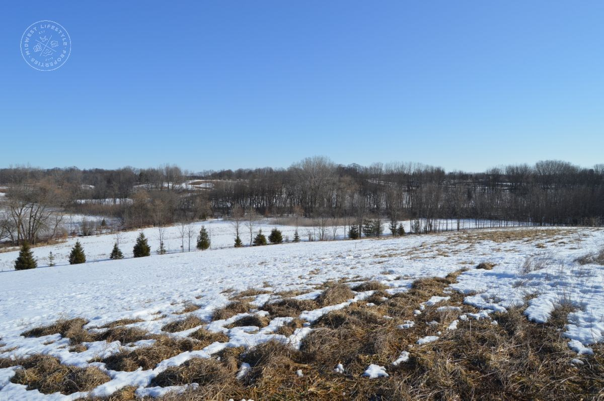 29 Acre Manitowoc County Land Auction Online Pigeon Lake Rd