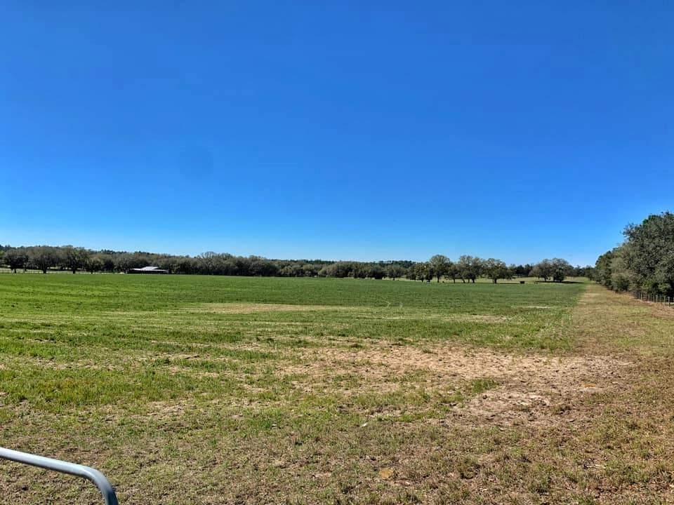 ACREAGE FOR SALE - LEVY COUNTY, WILLISTON FLORIDA