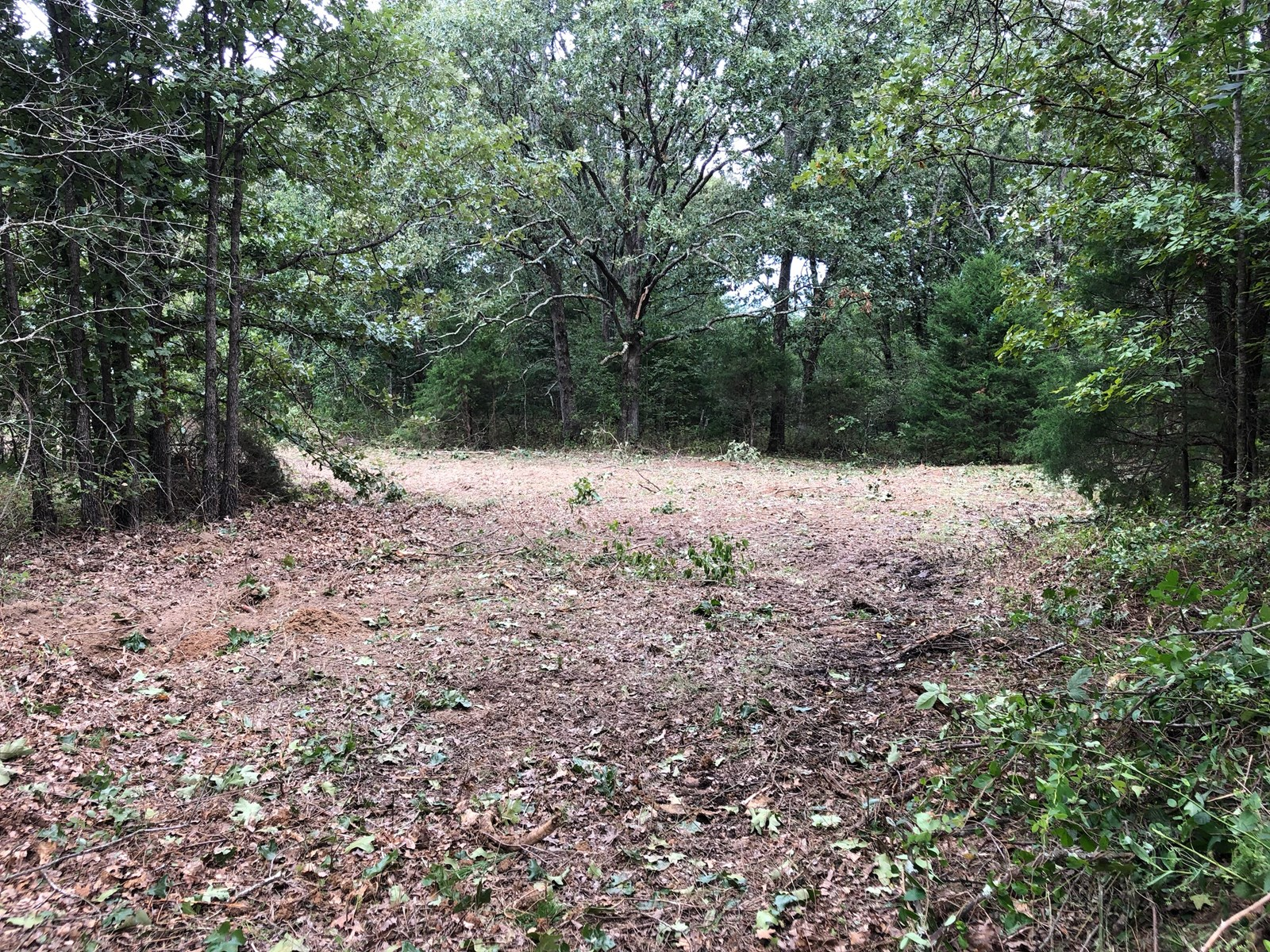 20.25 Acres of mostly wooded property has lots of potential.