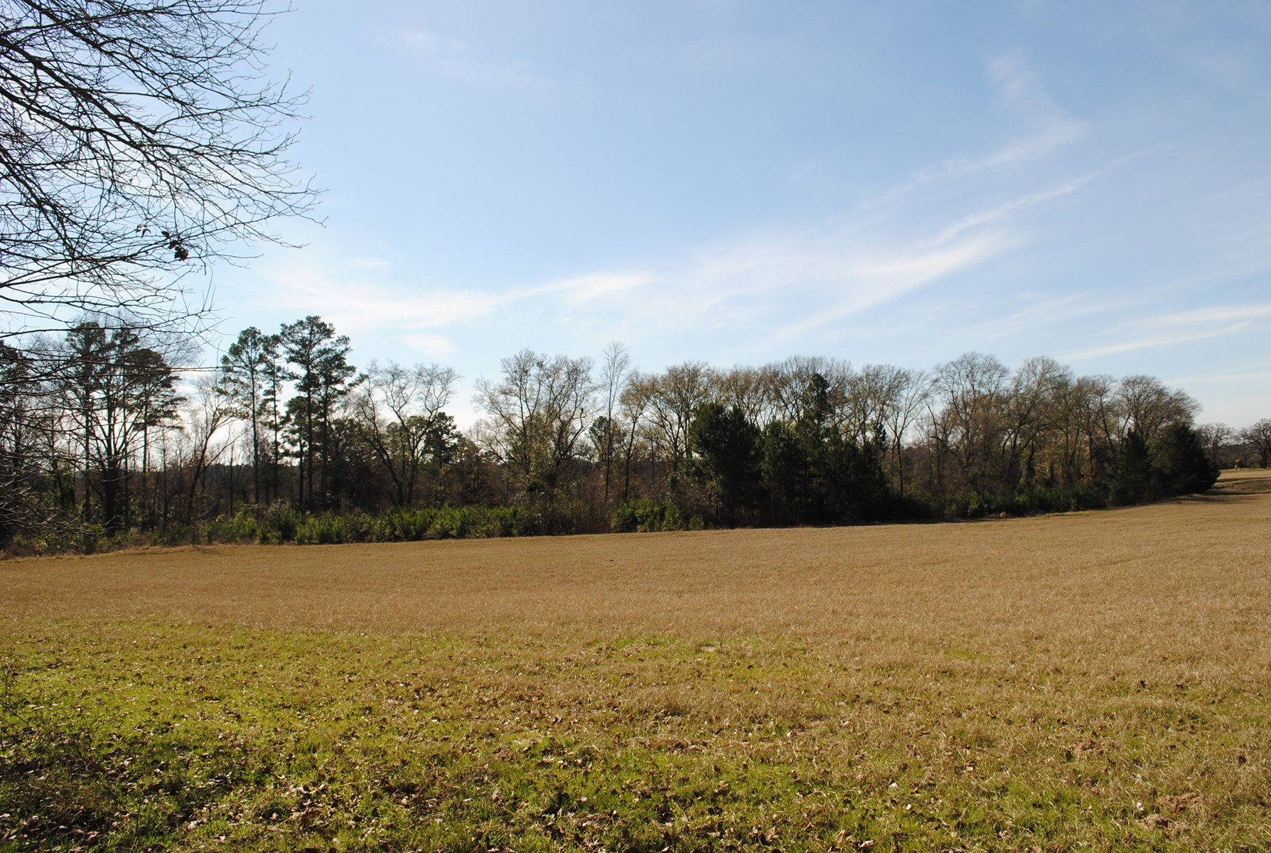 Rural Land For Sell Tyler Tx  Acreage Pasture Land