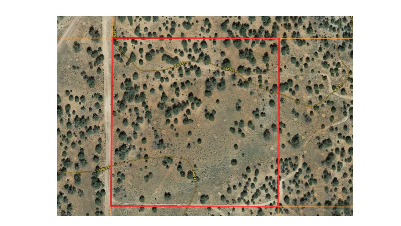 Affordable Mountain Land for Sale Seligman AZ