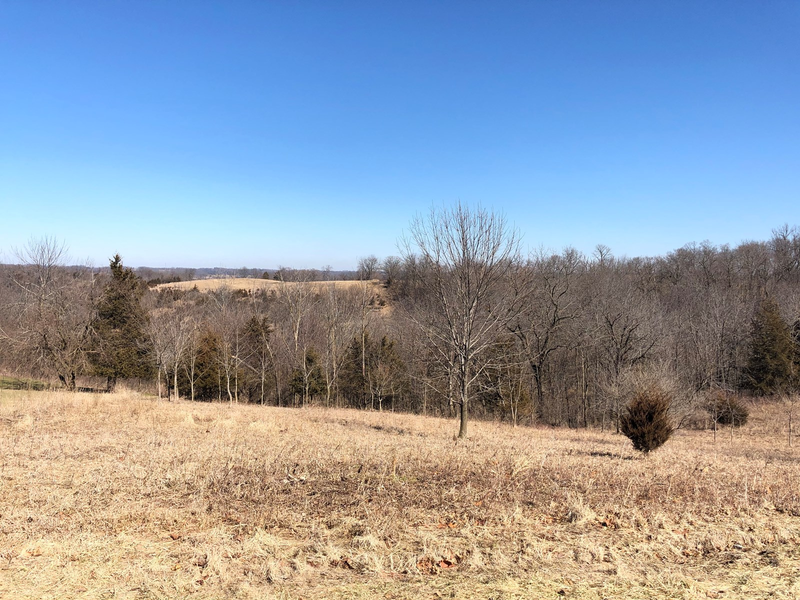 Galena Territory Lot for sale