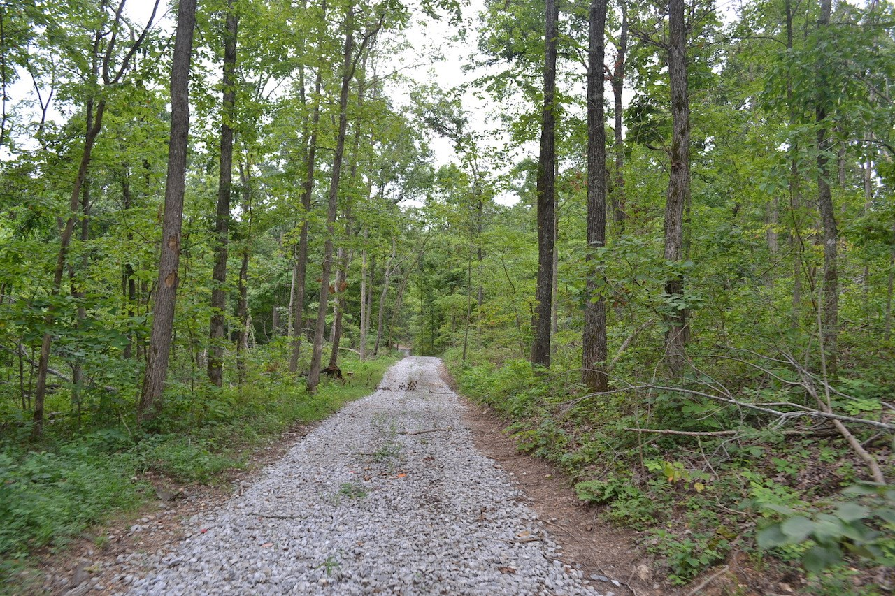 Prime Hunting Land for Sale in the Missouri Ozarks