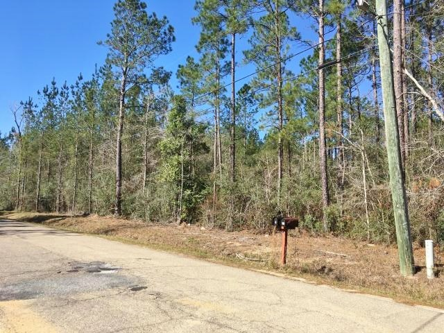 20 Acres Pine Grove Hunting Land & Home Site Picayune MS