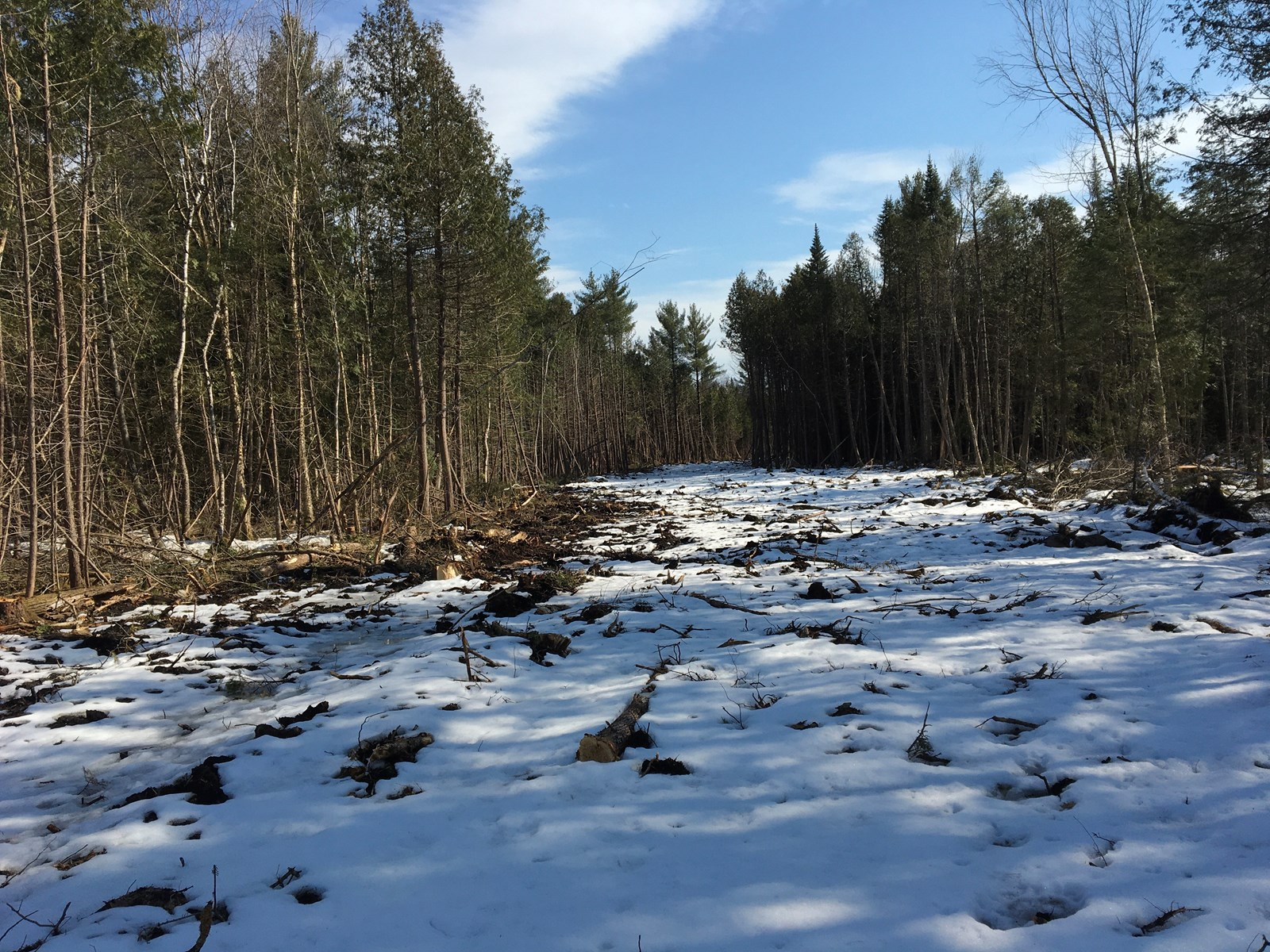 Central Maine Land For Sale with Well, Septic, and Electric