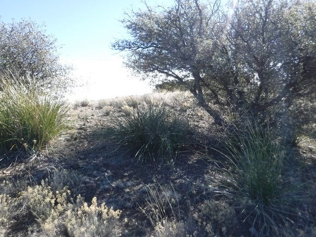 1.5 AC GOLF COURSE PROPERTY FOR SALE SILVER CITY NM