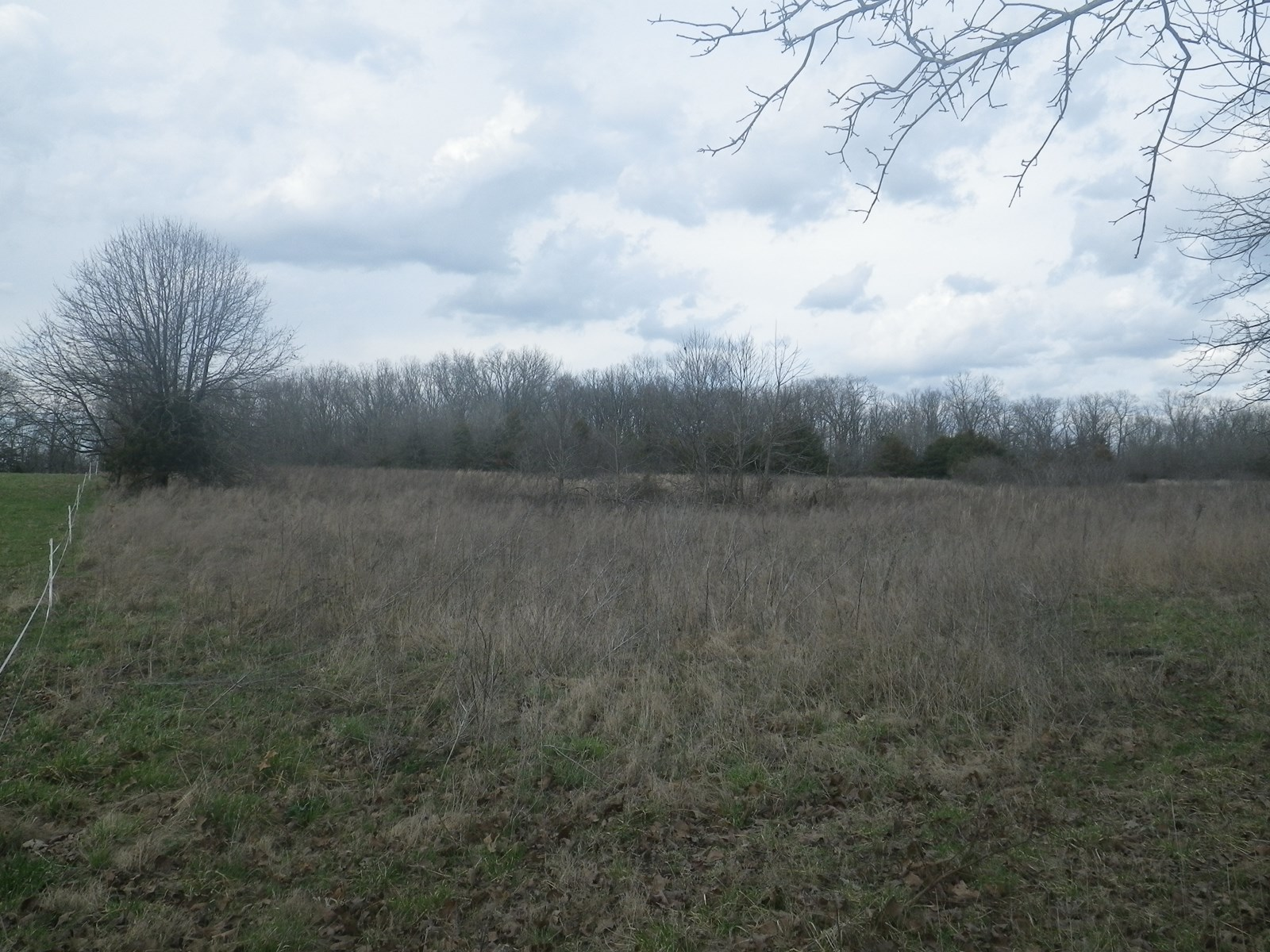 Land for Sale in Southern Missouri - Hunting - Build Here