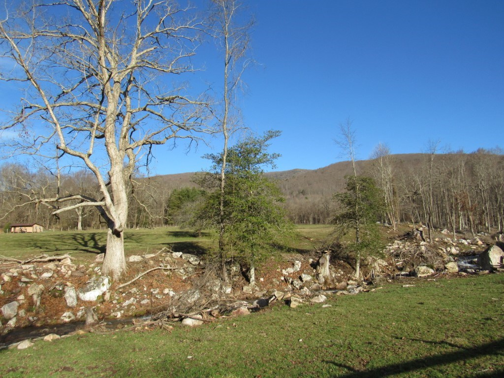 Great Building Site And Mini Farm For Sale In Abingdon VA