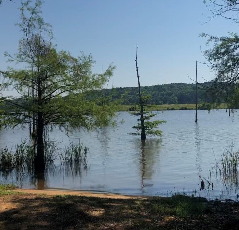 Land For Sale on Lake D'Arbonne!!