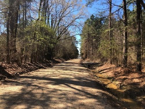 Land For Sale near Felsenthal on Prairie Island Road!