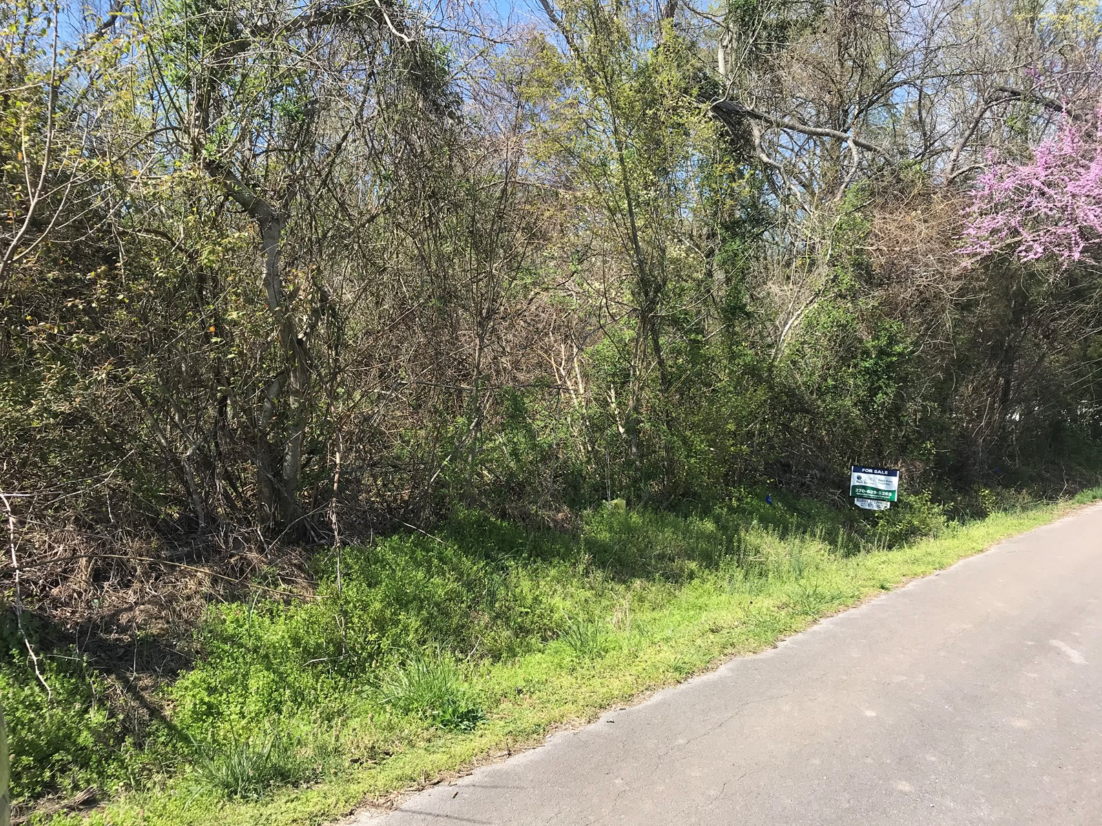Lot For Sale in Allen County KY