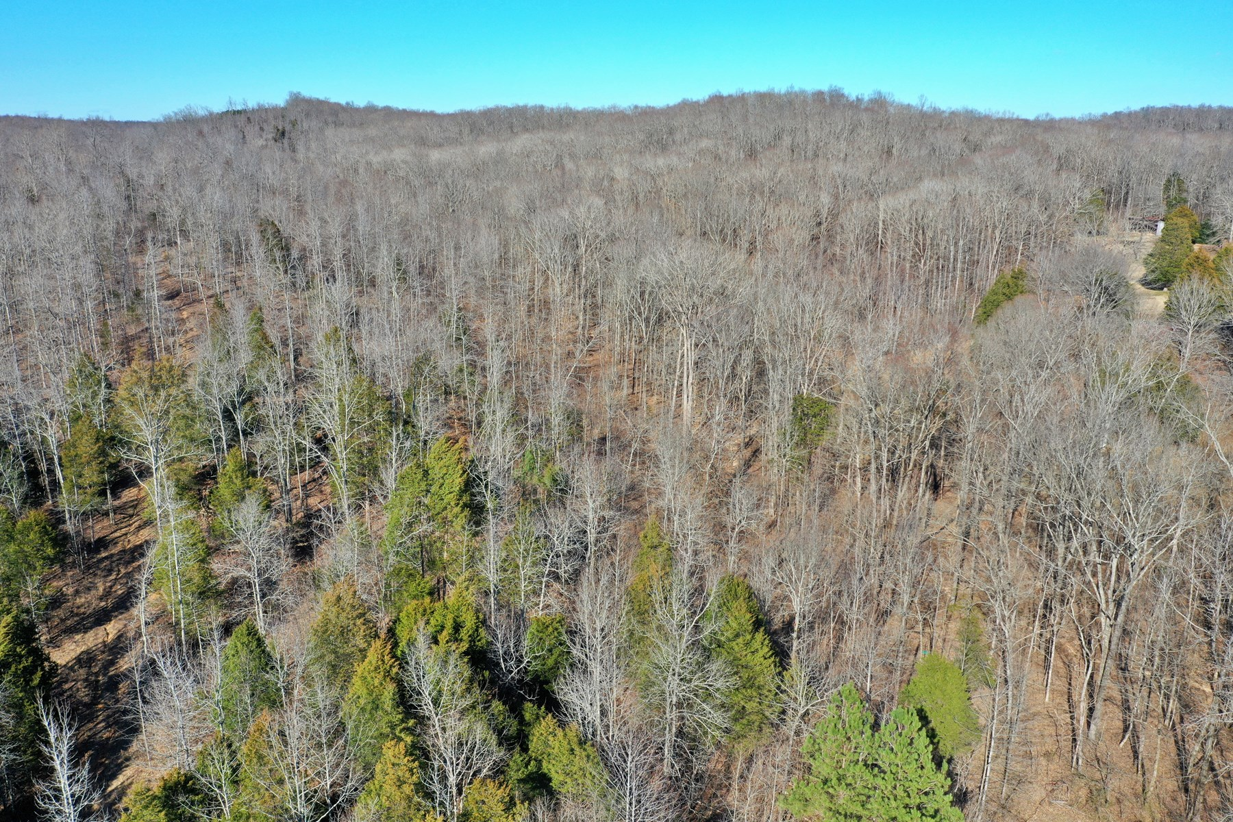 33.65 Ac Unrestricted, Near Tennessee River; Hunting
