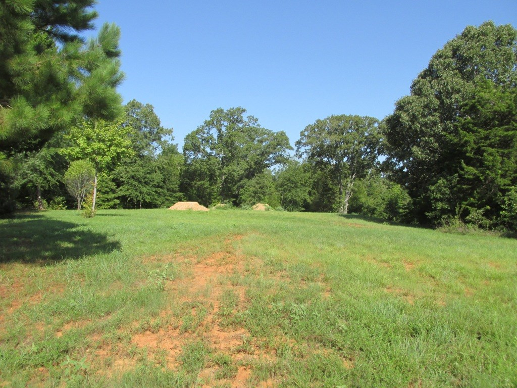 VACANT LOT FOR SALE IN PALESTINE TX CITY LIMITS