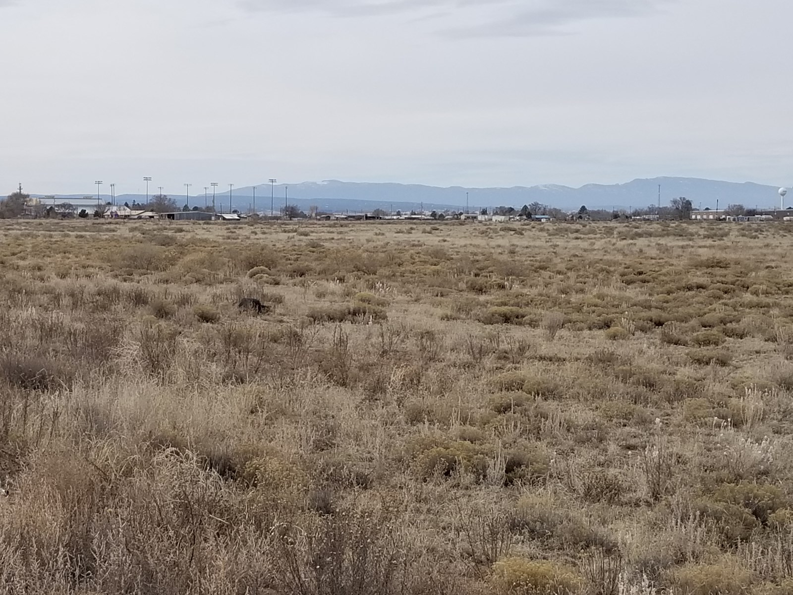 Acreage For Sale In Torrance County New Mexico