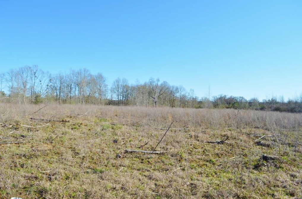 23.46 Acres Vacant Land for sale in Lincoln County MS