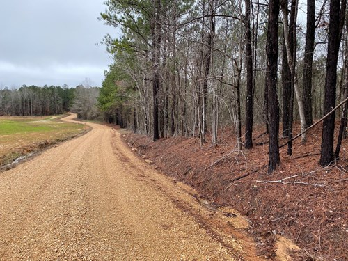 Land for Sale - McKnight Rd, Ackerman, MS