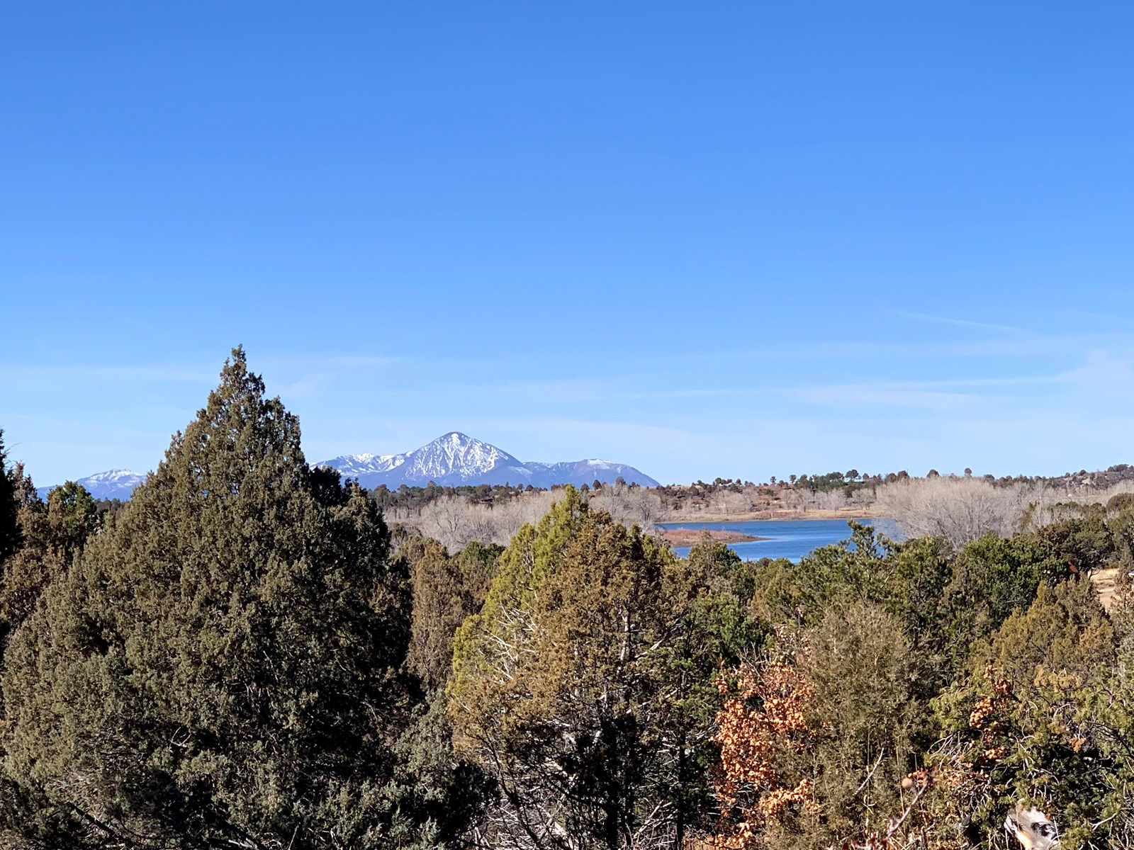 Heavily wood lot with lake view for sale in SW Colorado