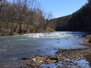 ACREAGE ON BIG PINEY CREEK AT BOSWELL ARKANSAS