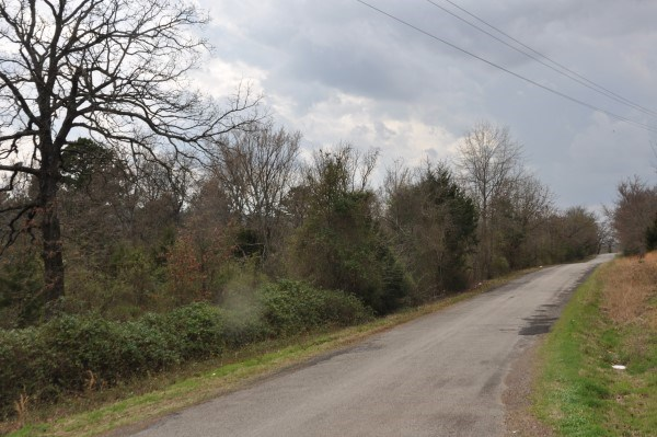 10 ACRE HOMESITE – WOODED – NEAR LAKE WISTER