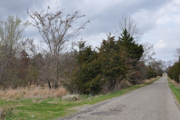 10 A. WOODED LAND – HOMESITE – 2 MI WISTER LAKE