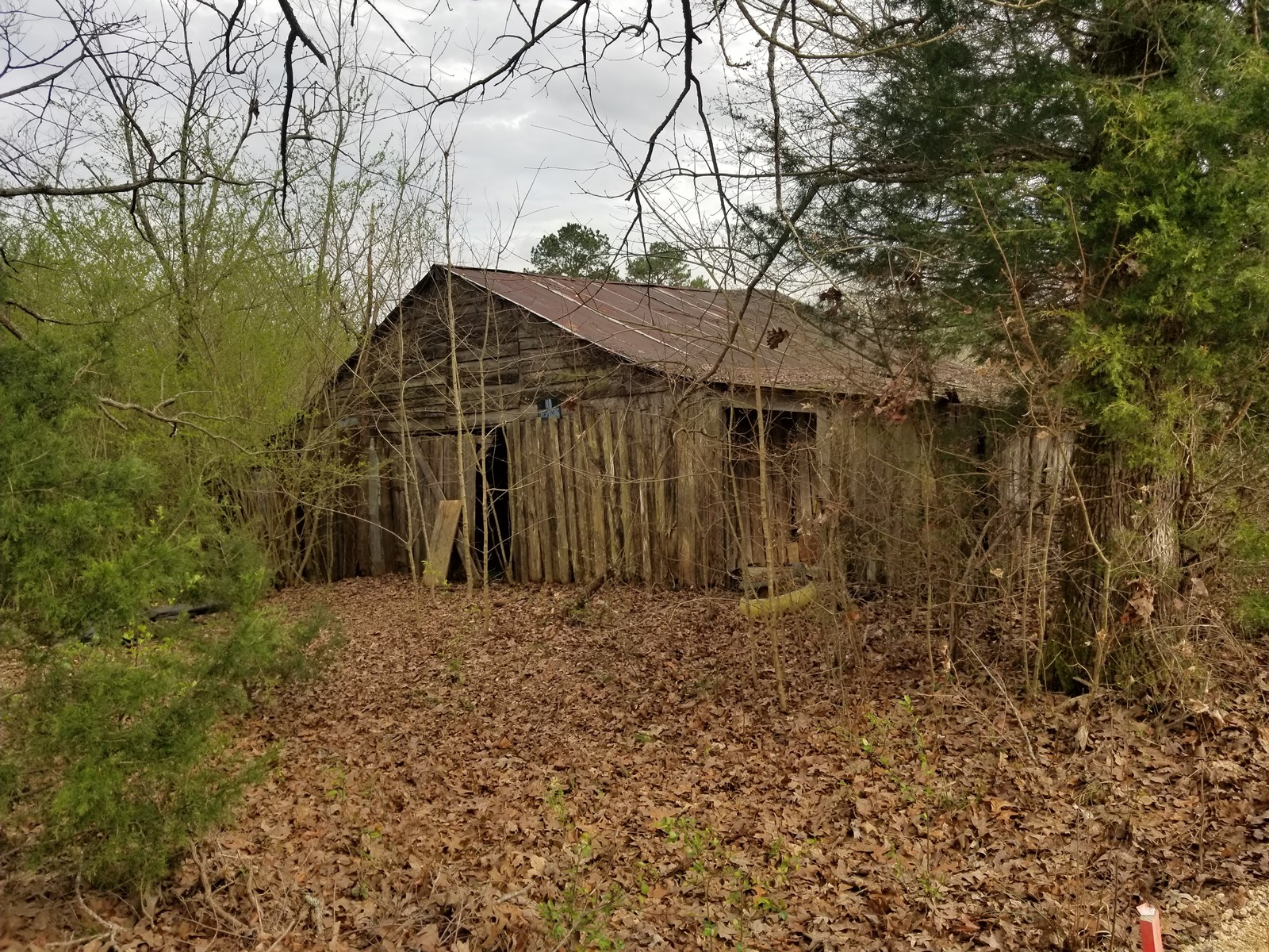 26.9 ACRES SOUTH TN LAND FOR SALE SPRING POND TIMBER HUNTING
