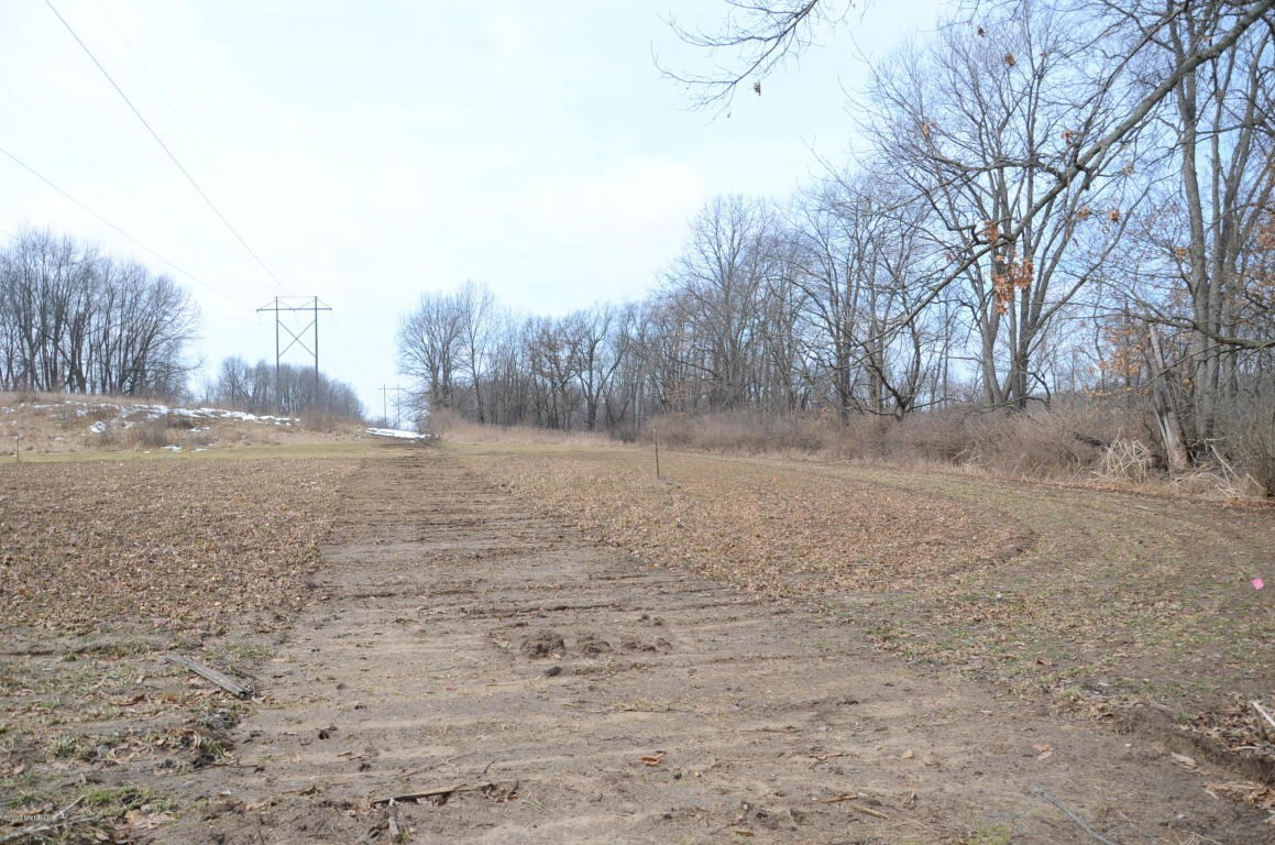 Nice recreational tract on 40.91 acres near Jackson MI