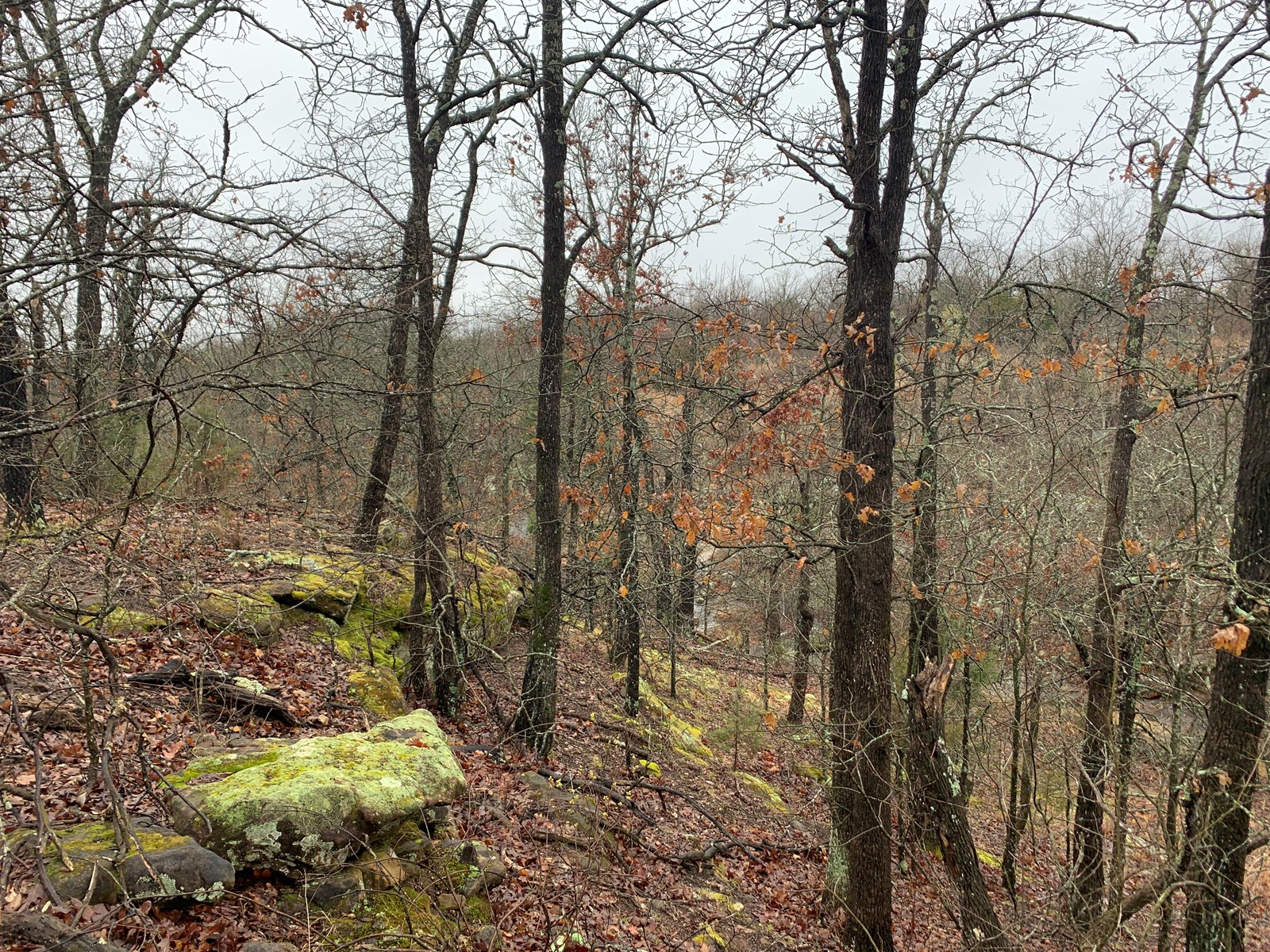 Hunting Land or Home Site For Sale Stroud, Oklahoma