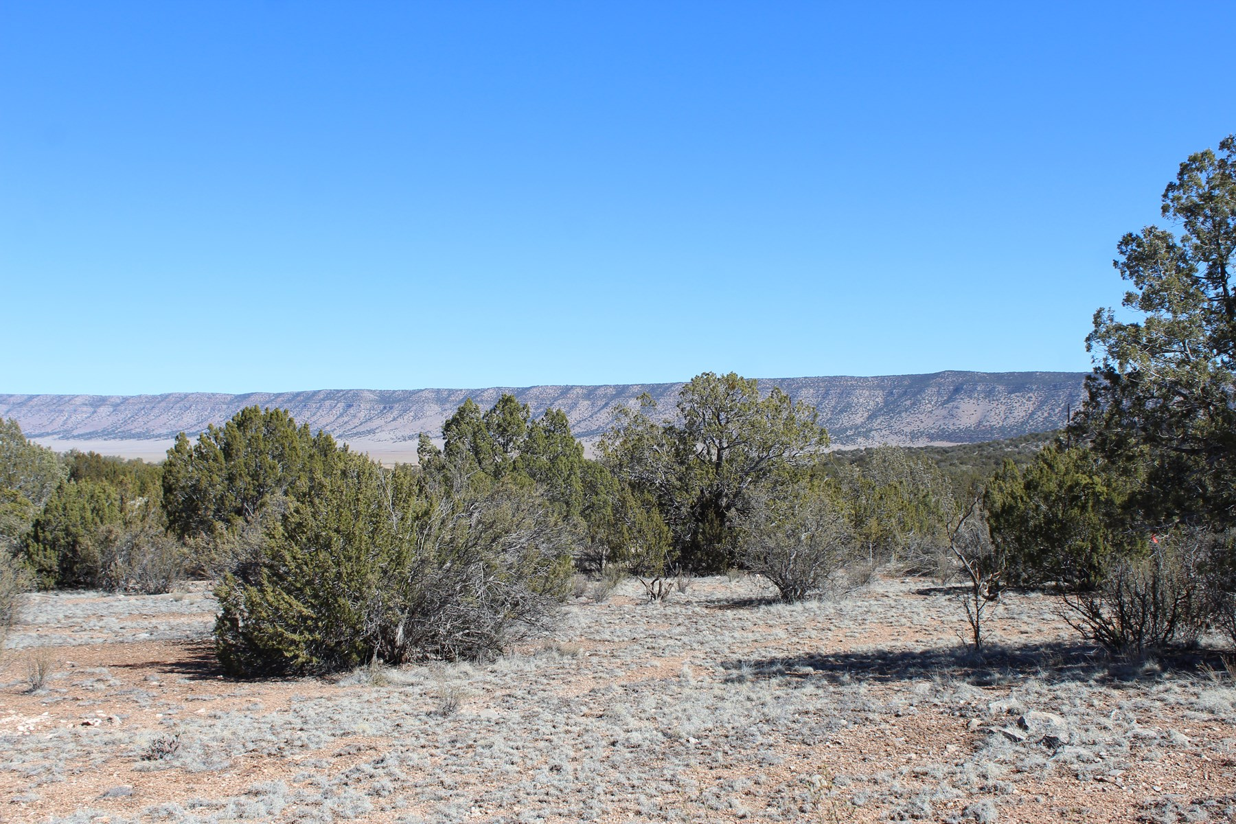 Vacant Mountain Land for Sale in Seligman AZ