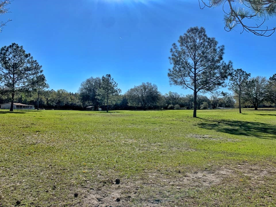 VACANT LAND FOR SALE 10 AC - BELL FLORIDA