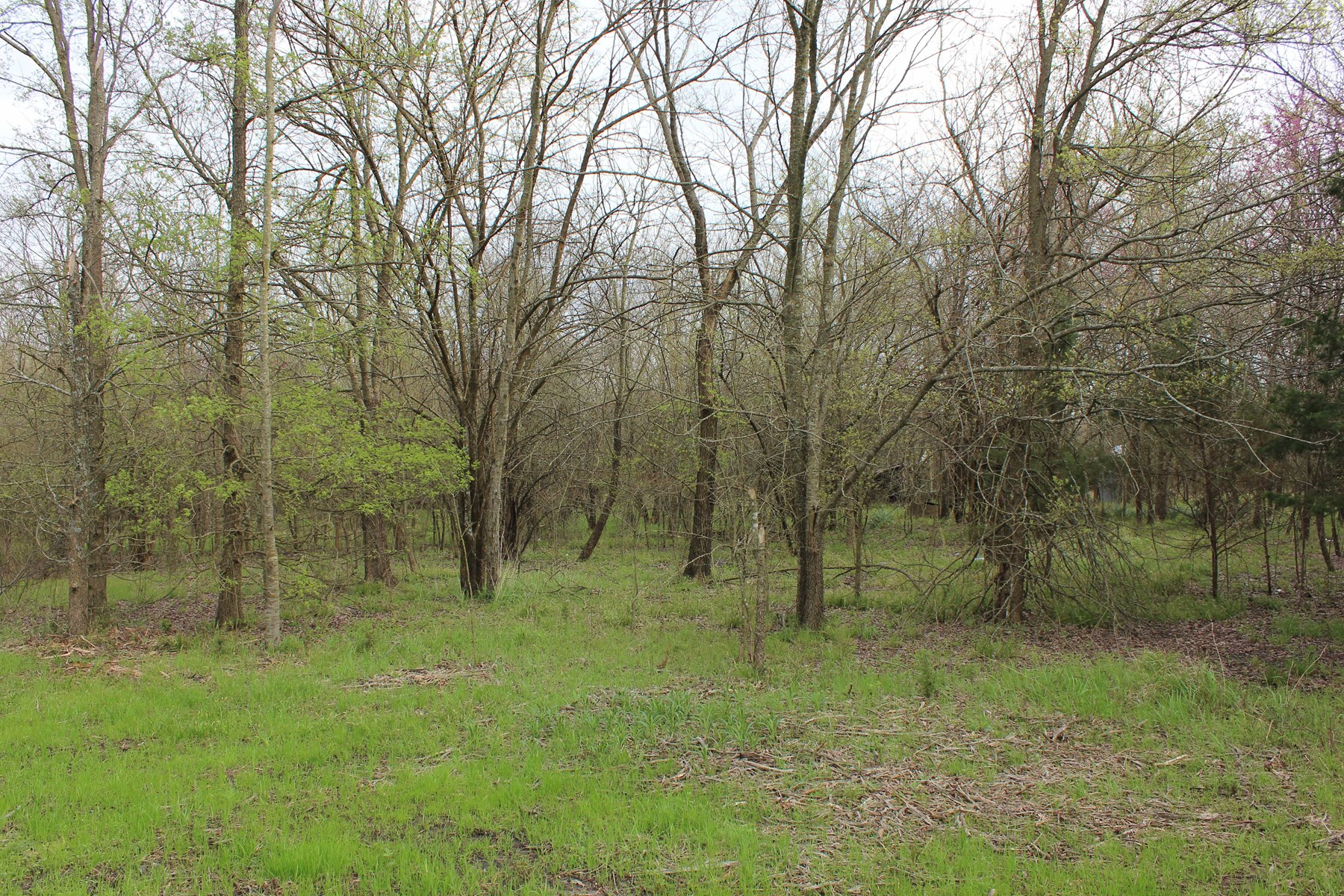 Recreational Land For Sale Paris Texas In  Lamar County