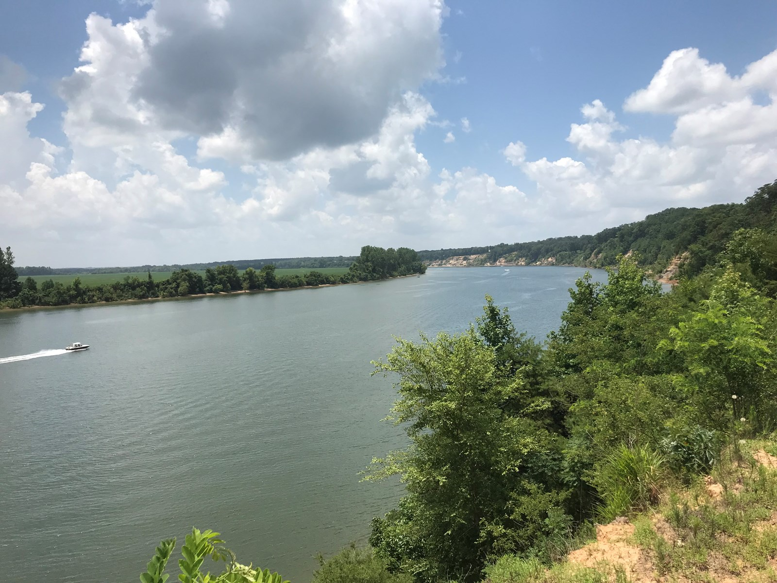RIVER FRONT LAND FOR SALE IN TN ON TENNESSEE RIVER